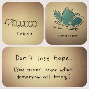 Dont-Lose-Hope